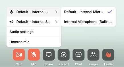 BOR - audio settings-1